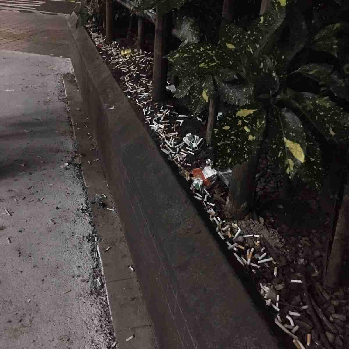 ハチ公前、路上喫煙が後絶たず 清掃員の面前でポイ捨て