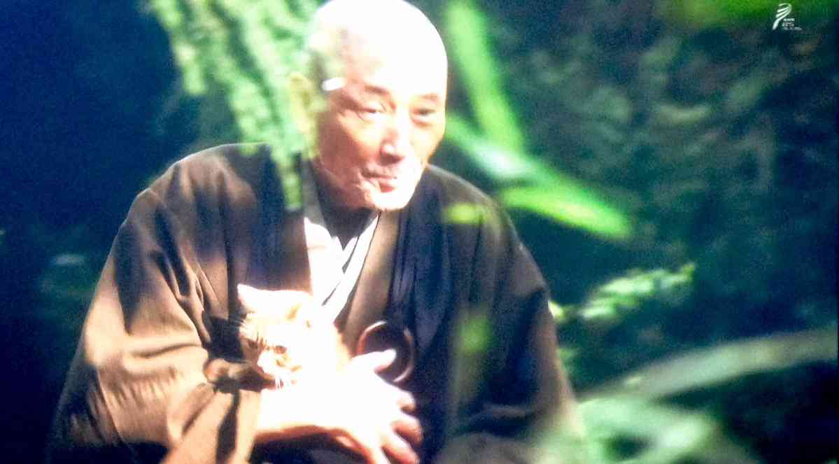 【実況・感想】おんな城主 直虎(3)「おとわ危機一髪」