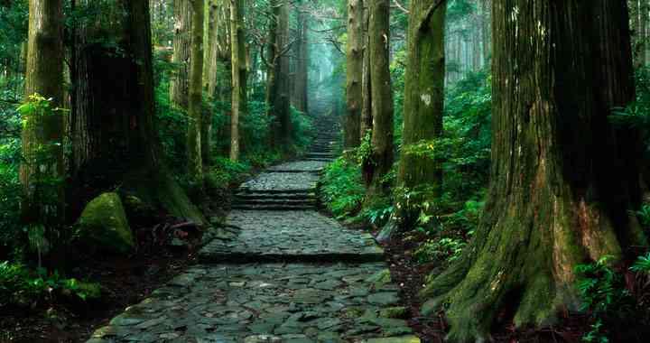 日本で絶対に行くべき素敵な場所