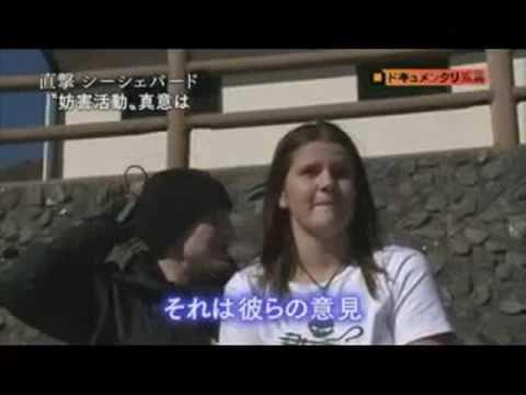【シーシェパード】It's fun! 似非動物愛護屑団体【Sea Shepherd】 - YouTube