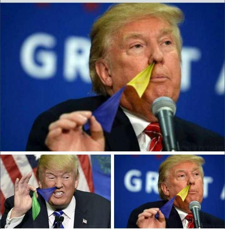 鼻から旗を引っ張り出しているドナルド・トランプ候補のコラ画像が話題