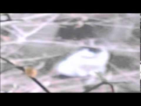 まんが日本昔ばなし BGM5 - YouTube