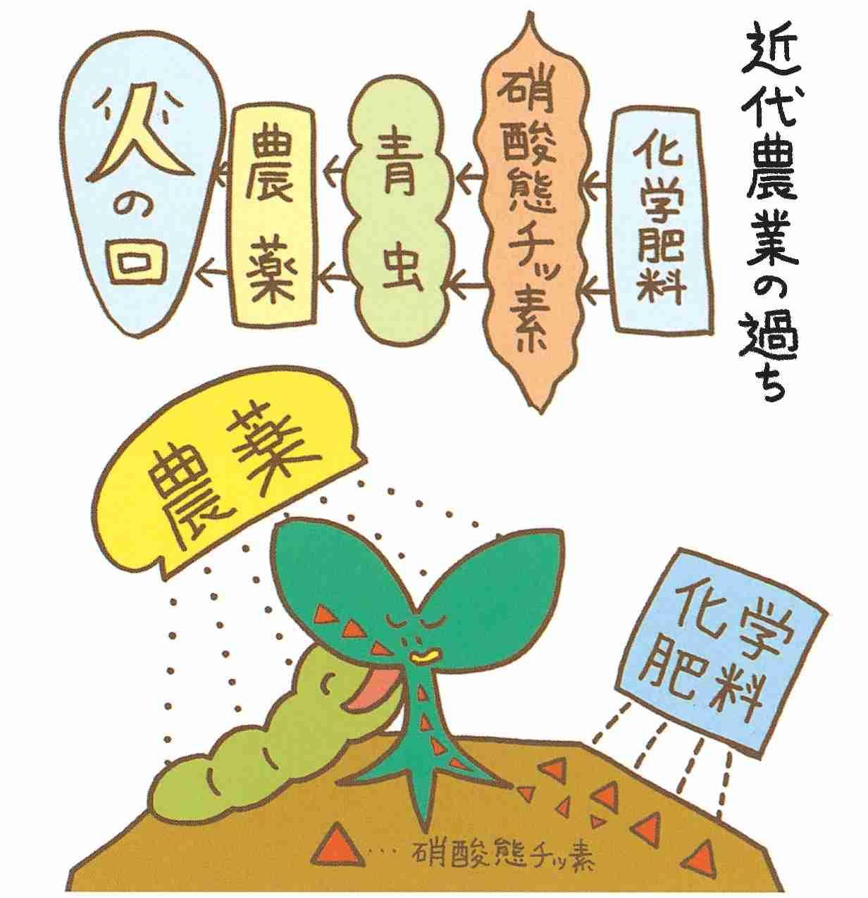 日本人だけが知らない!日本の野菜は海外で「汚染物」扱いされている