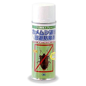 【虫対策】カメムシが苦手な人!