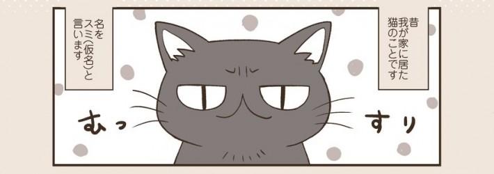 亡くなってから7年目に分かったこと…「飼い猫の仕草」の漫画に涙腺崩壊する人続出!