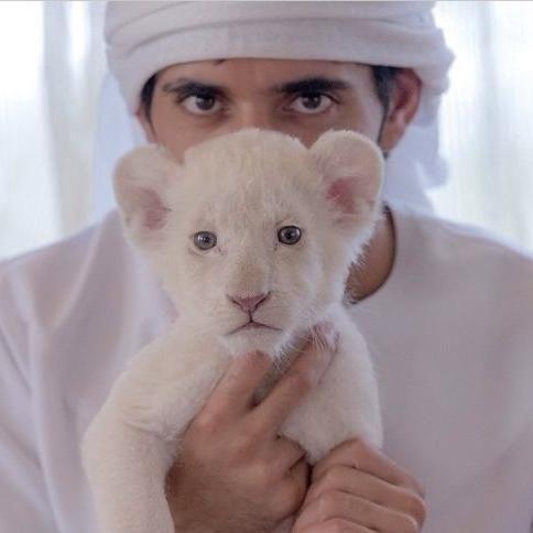 イケメン王子!ドバイのハムダン皇太子のインスタグラムが世界中で大人気らしい - NAVER まとめ