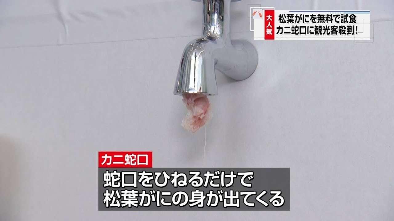 カニニュース「カニ蛇口」(鳥取カニ動画) - YouTube