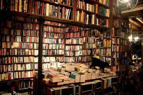 「ドミノ撮影するから本を貸して」古書店に申し出たテレビ局に呆れと批判の声「非常識だ」