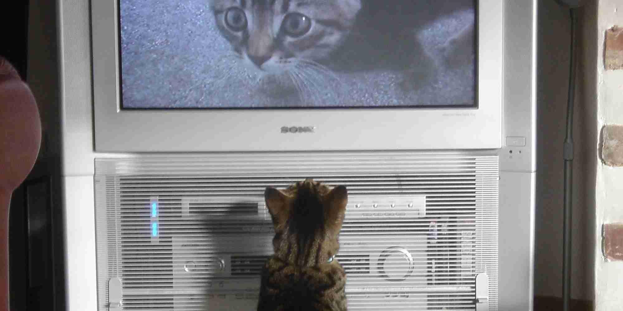 もはや世帯視聴率だけでテレビを測る時代ではない〜新世紀テレビ大学「TVデータ最前線」開催〜 境 治
