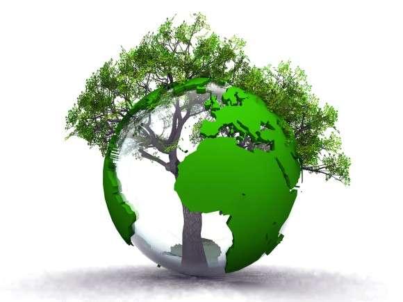 二酸化炭素の増加により地球の緑化が進んでいることが判明(NASA研究) : カラパイア