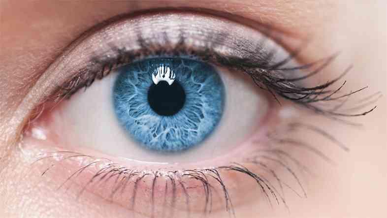 「被害者の写真の瞳に映る容疑者を特定する」というまるでSFみたいなホントの話