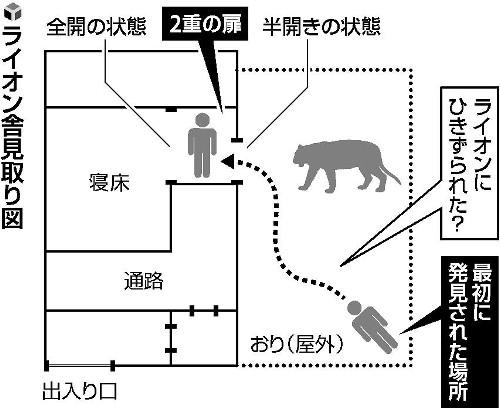 ライオン飼育員、寝床の扉まで引きずられたか : 社会 : 読売新聞(YOMIURI ONLINE)
