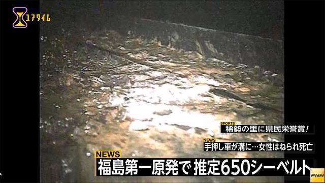 福島第1原発2号機 格納容器内で推定650シーベルト(フジテレビ系(FNN)) - Yahoo!ニュース