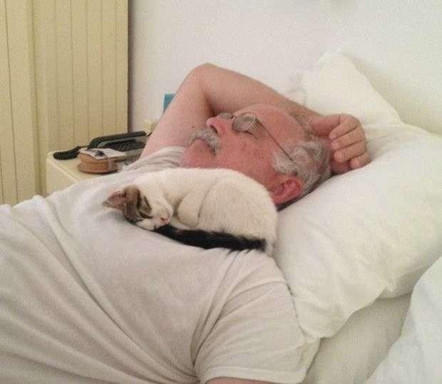 ホテルに暮らす猫、勝手に「添い寝サービス」をはじめる!
