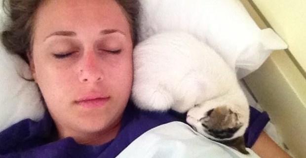 ホテルに暮らす猫、勝手に「添い寝サービス」をはじめる!    BUZZmag