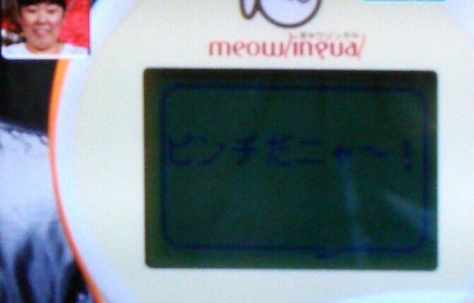 【実況・感想】世界の果てまでイッテQ2時間スペシャル
