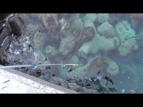 根掛かりの外し方 【海釣りビギナー技術編】 - YouTube