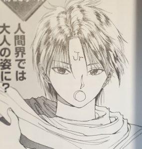 マンガ・アニメの好きな髪型