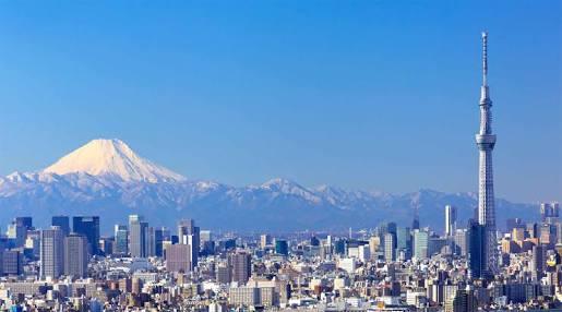 東京生まれ東京育ち(現在進行形)の方に聞きたい。