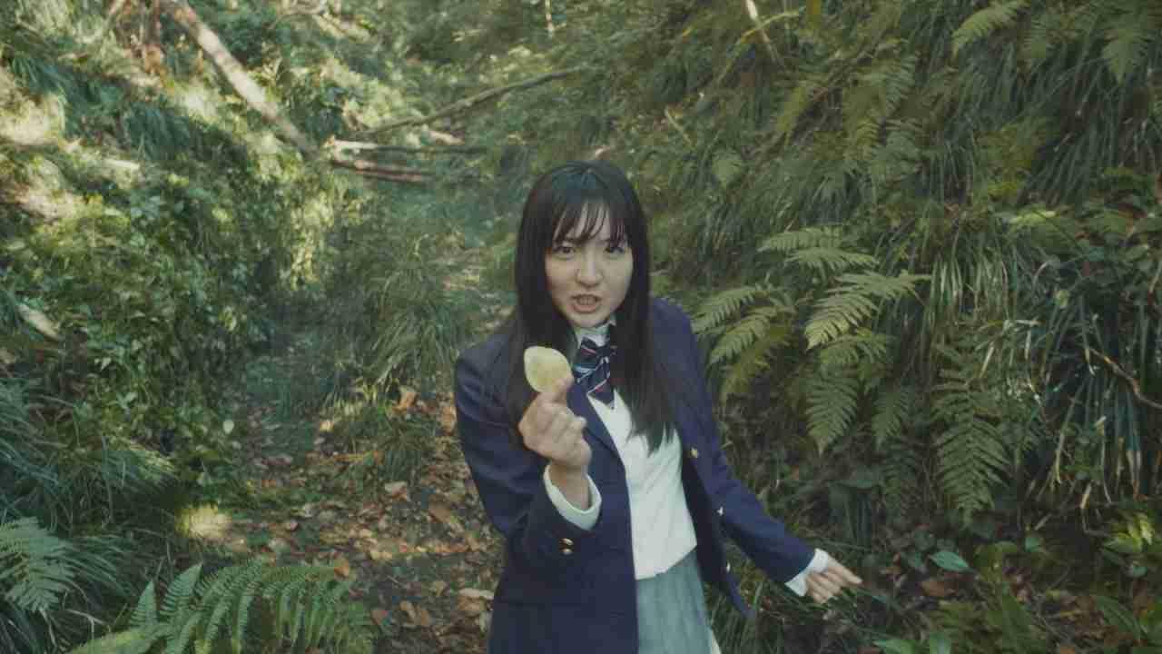 湖池屋 KOIKEYA PRIDE POTATO 「100% SONG」CM30秒篇 - YouTube
