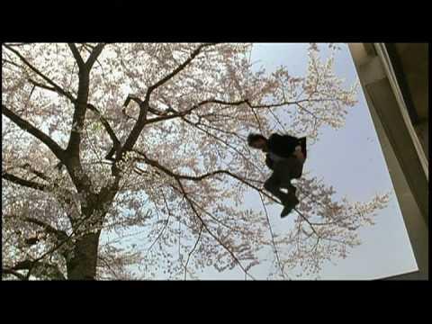 桜が似合う芸能人は?