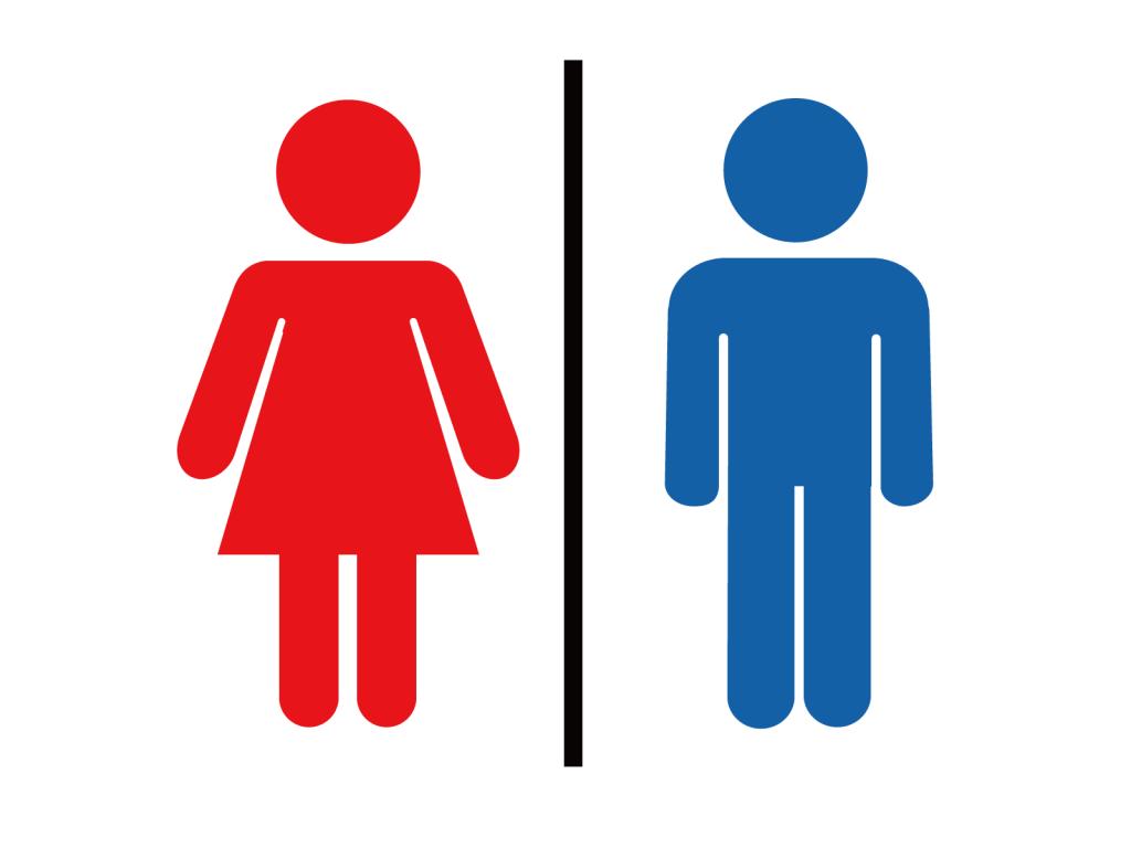 脳に性別は無い?「男性脳」「女性脳」に関する意外な研究結果とは | ライフメディア faretech.jp