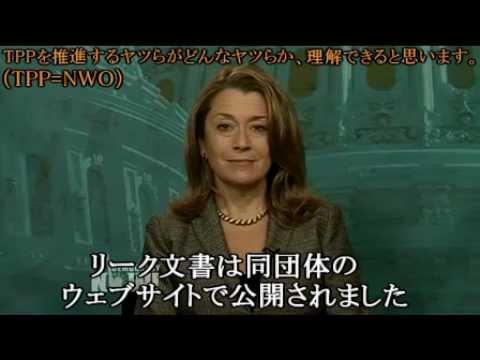 【 TPP 】 こんな馬鹿げた世界支配の道具を推進しているのは誰だ! - YouTube