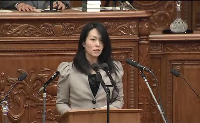 【書き起こし】「本来日本は、女性が大切にされ、世界で一番女性が輝いていた国だった」-次世代の党・杉田水脈議員質疑