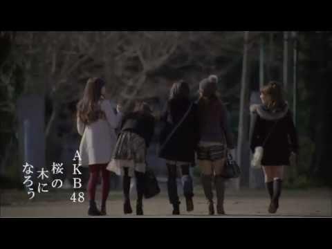 【MV full】 桜の木になろう / AKB48 [公式] - YouTube