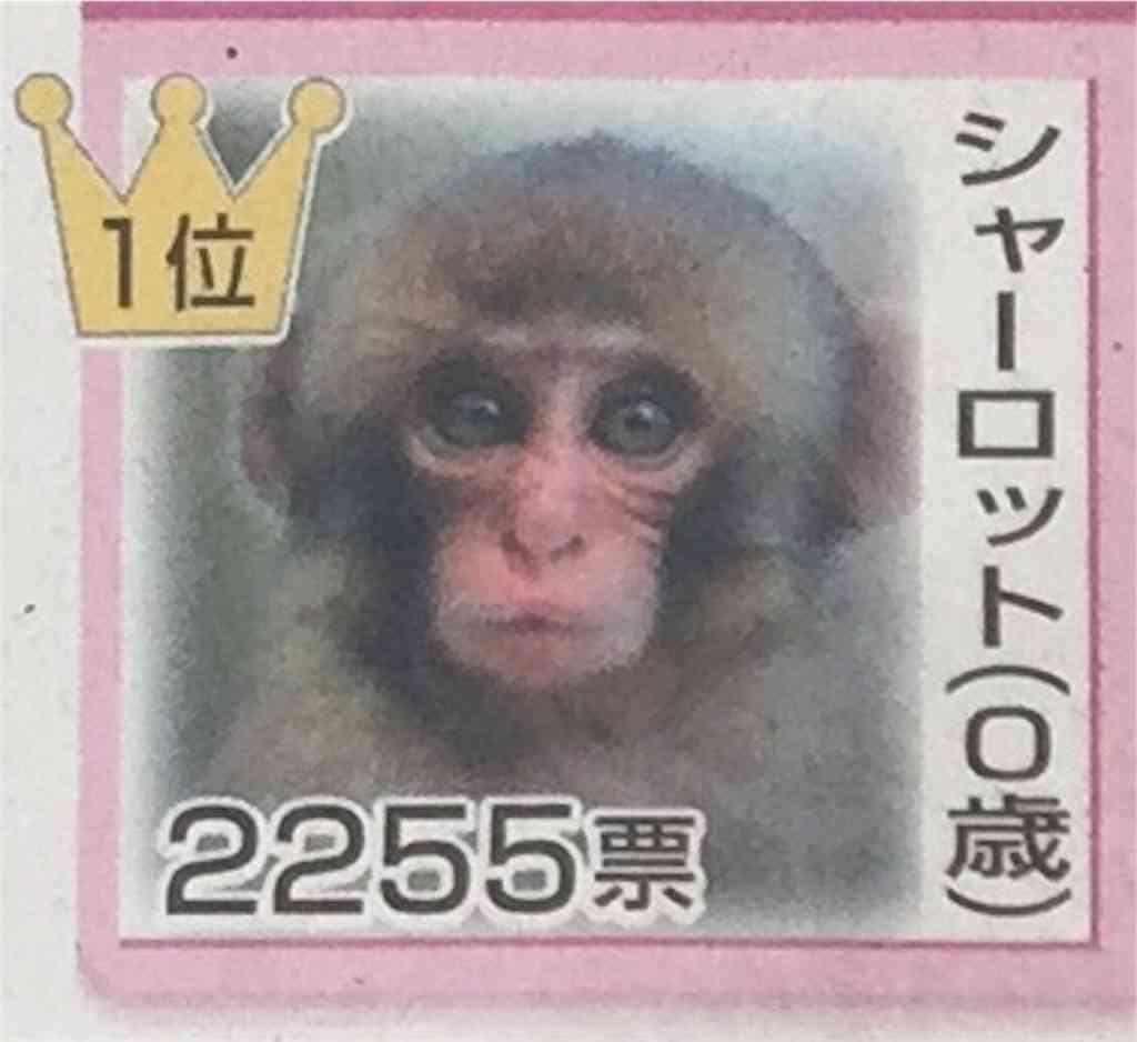 女子生徒に「サル」と不適切なあだ名 岐阜の中学で教諭