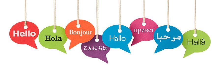 英語以外の外国語勉強してる方