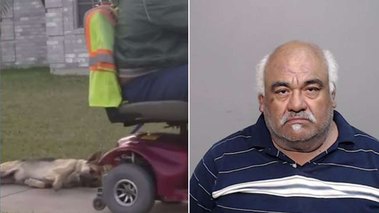 Man Arrested After Neighbor Records Him Dragging Dog From Back Of Scooter - YouTube