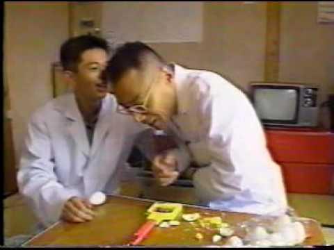 TV探偵ナイトスクープ 爆発卵(初回放送完全版) - YouTube