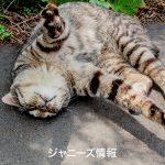 嵐・櫻井翔「3年は結婚しない」報道に「自己チューすぎ!」と批判殺到 – アサジョ