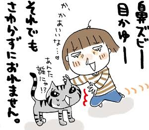 猫アレルギーについて
