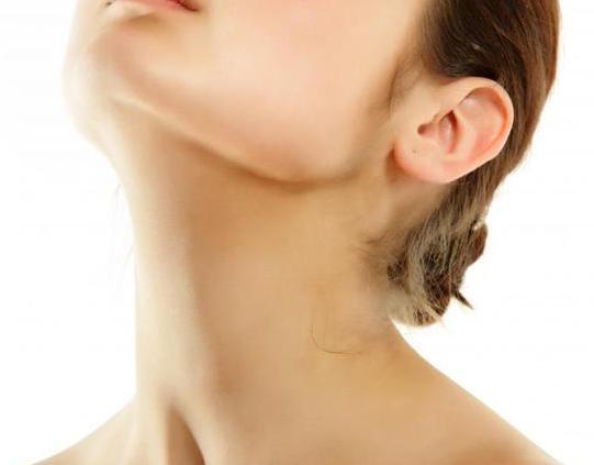 首のシワを消す簡単エクササイズ2つ!すき間時間に毎日しましょう!アンチエイジング