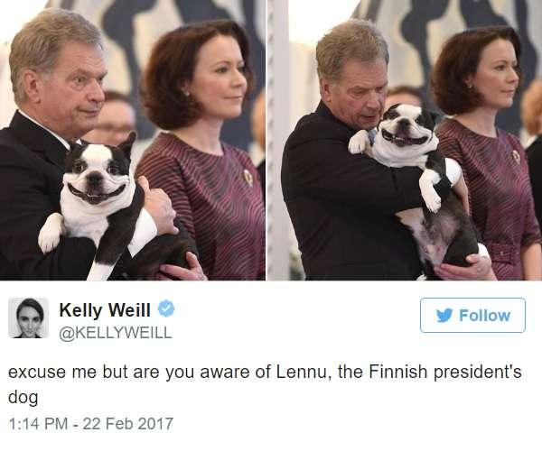 フィンランド大統領のペット犬の笑顔がとってもキュート! - AOLニュース