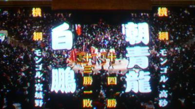 元朝青龍、桁外れ実業家生活の全貌 銀行経営、首都中心地に東京ドーム5つ分の土地