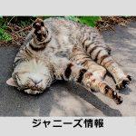 木村拓哉、「A LIFE」が嵐・松本潤に完敗で「主演俳優はもう厳しい」の声 – アサジョ