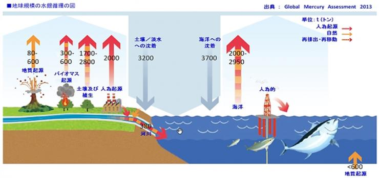 豊洲新市場(地下たまり水)と築地市場(濾過海水)、独自調査では双方から環境基準値を超える汚染物質が検出も…? | 東京都議会議員 おときた駿 公式サイト