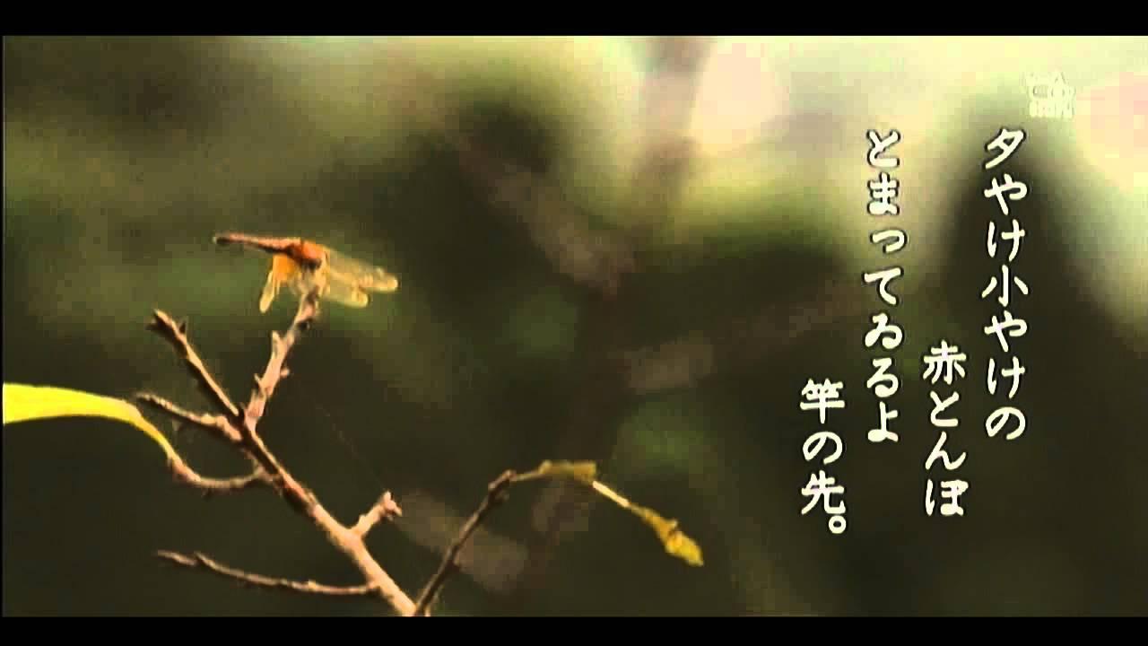 赤とんぼ(童謡) 由紀さおり&安田祥子 - YouTube