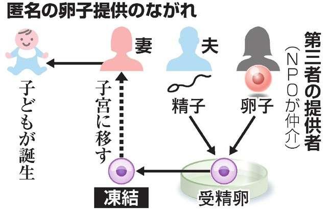 匿名の第三者の卵子で女児誕生 国内初の体外受精