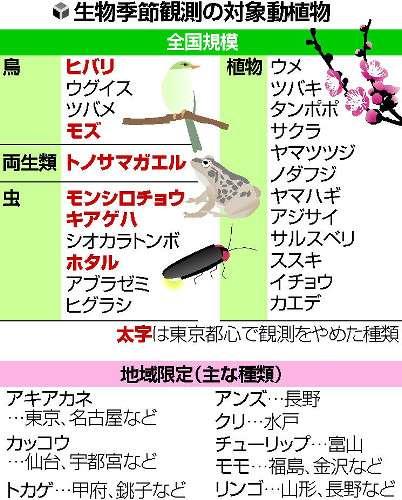 東京都心でツバメが2年続けて観測されず…「生物季節観測」ピンチ - ライブドアニュース