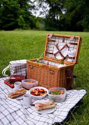 ピクニックに持っていくもの!