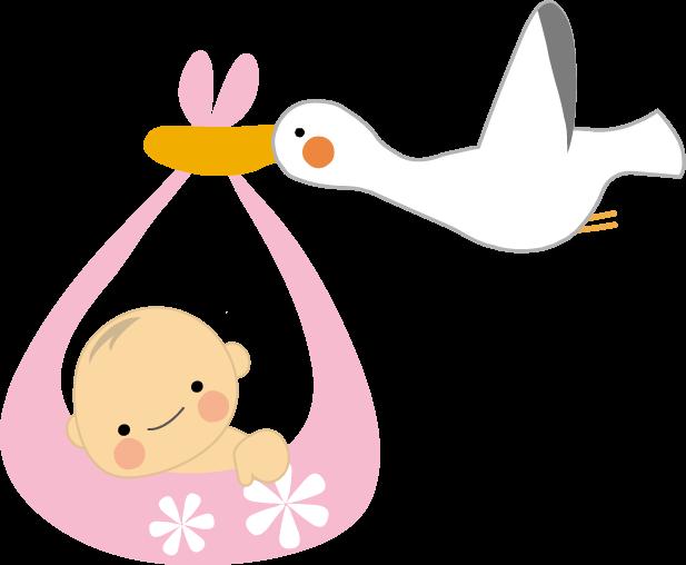 子供の作り方、いつ知りましたか?