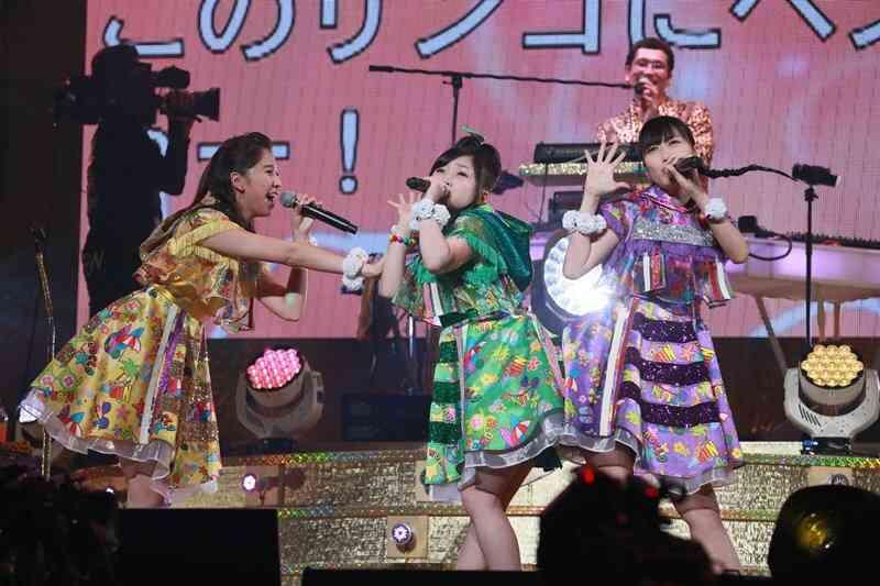ピコ太郎、初武道館ライブで「PPAP」10回披露 豪華コラボに7000人熱狂