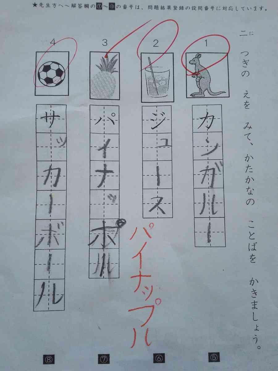 小学生の書き取り問題のミスが、完全にピコ太郎のせい(笑)