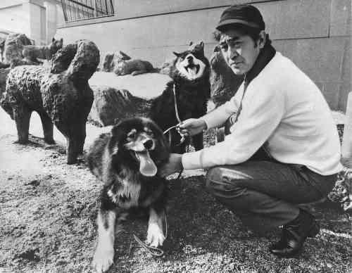 情に厚い男だった渡瀬さん「南極物語」タロとジロ 共演後も飼い続けた - BIGLOBEニュース