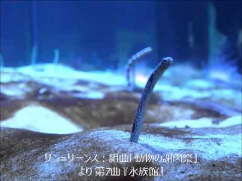 サン=サーンス:組曲「動物の謝肉祭」より 第7曲 『水族館』 - YouTube