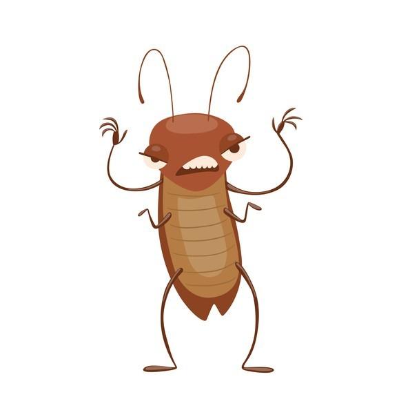 <ゴキブリ>繁殖に雄いらず 雌3匹以上で単為生殖促進 (毎日新聞) - Yahoo!ニュース